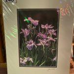 #140. SOLD John Gill Photography  Irises $35.00